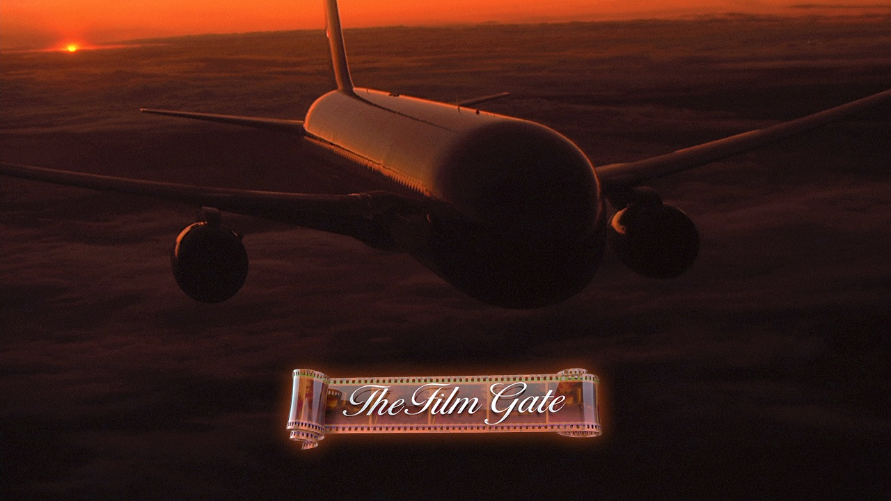 767 Flying Dusk Stock Footage